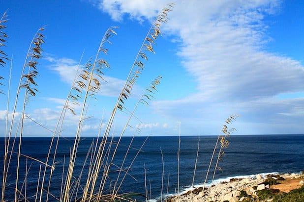 Natural Reserve of Capo Gallo