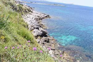 Capo Gallo sea
