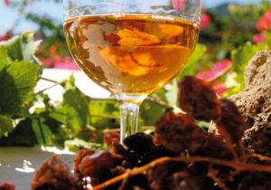 zibibbo wine